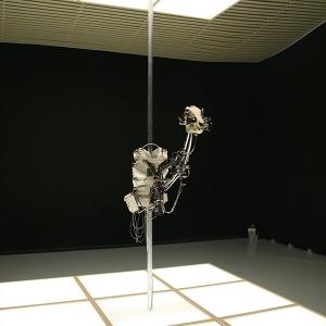 Christiaan-Zwanikken-Exoskeletal